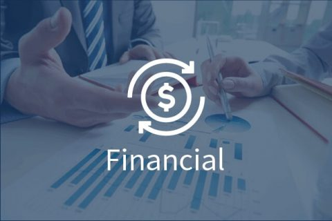 financial translation services